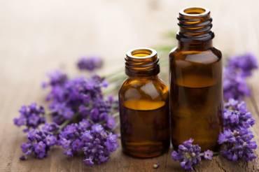 Das ätherische Lavendelöl